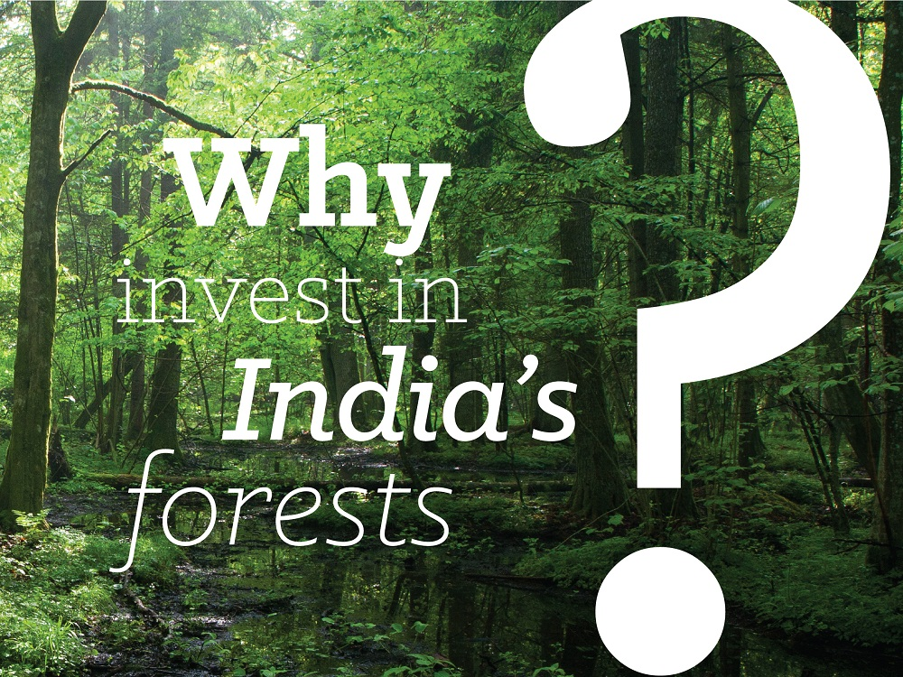 Forestry Infographics on India
