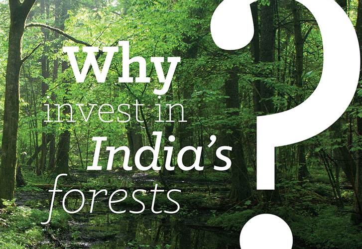 vertiver blog Forestry Infographics on India